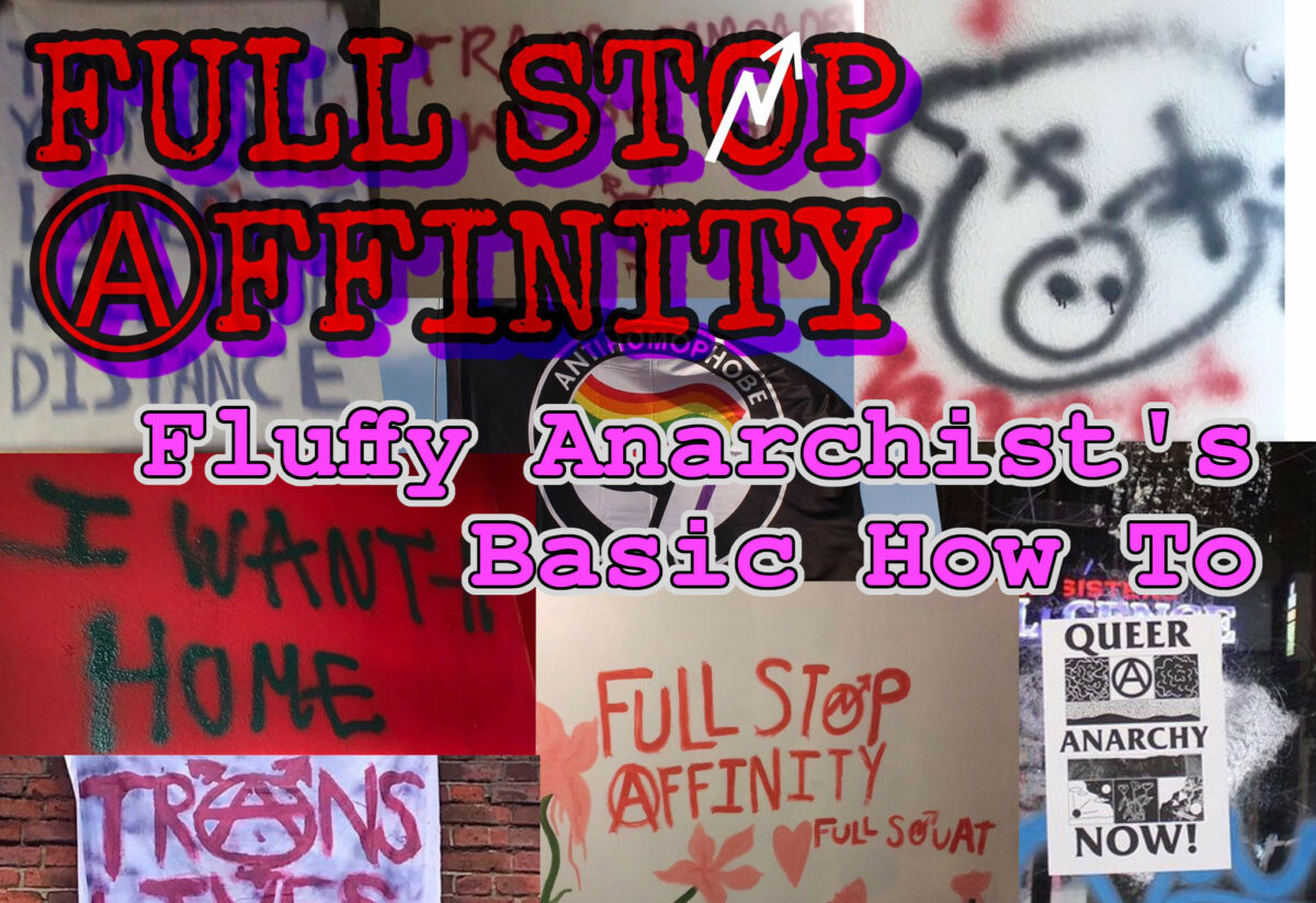 Full Stop Affinity's How To for the Fluffy Anarchist Basics (part 1)