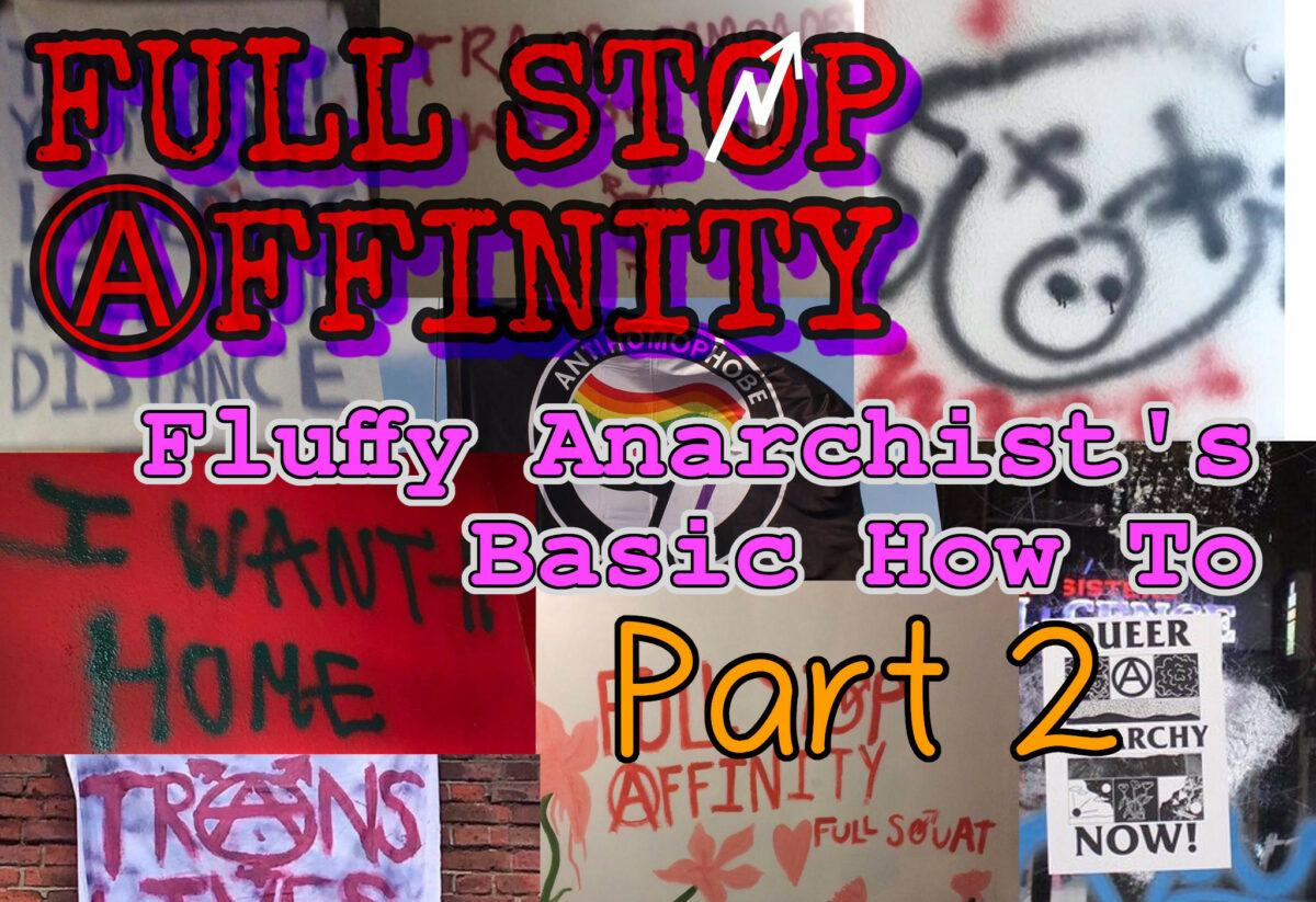 Full Stop Affinity's How To for the Fluffy Anarchist Basics (part 2)